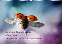 Ich wünsche dir Glück! (Posterbuch DIN A2 quer) - Produktdetailbild 6