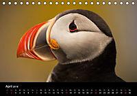 Island - Landschaft und Natur (Tischkalender 2018 DIN A5 quer) - Produktdetailbild 4