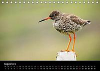 Island - Landschaft und Natur (Tischkalender 2018 DIN A5 quer) - Produktdetailbild 8