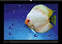 Kalendarische Unterwasserwelt (Wandkalender 2018 DIN A2 quer) - Produktdetailbild 5