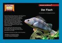 Kamishibai: Der Fisch