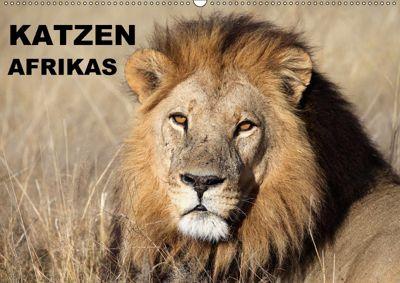 Katzen Afrikas (Wandkalender 2018 DIN A2 quer) Dieser erfolgreiche Kalender wurde dieses Jahr mit gleichen Bildern und a, Michael Herzog