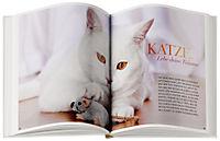 Katzen halten ganz entspannt - Produktdetailbild 2