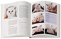 Katzen halten ganz entspannt - Produktdetailbild 1