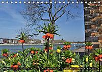 Koblenz Die Stadt am Deutschen Eck (Tischkalender 2018 DIN A5 quer) - Produktdetailbild 4