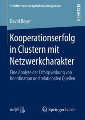 Kooperationserfolg in Clustern mit Netzwerkcharakter, David Beyer