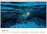 Korsika - Traumhafte Küsten am Mittelmeer (Wandkalender 2018 DIN A4 quer) - Produktdetailbild 10
