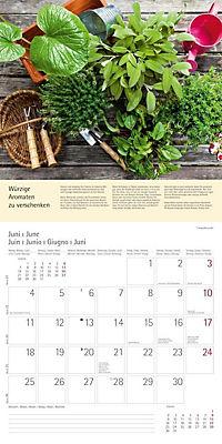 Kräuter & Gewürze 2018 - Produktdetailbild 6