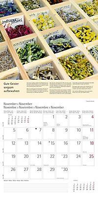 Kräuter & Gewürze 2018 - Produktdetailbild 11