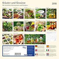 Kräuter & Gewürze 2018 - Produktdetailbild 14