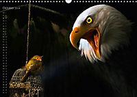 Kreaturen einzigARTig - skurrile Tierbilder (Wandkalender 2018 DIN A3 quer) - Produktdetailbild 10