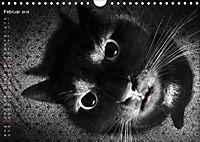 Kreaturen einzigARTig - skurrile Tierbilder (Wandkalender 2018 DIN A4 quer) - Produktdetailbild 2