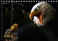 Kreaturen einzigARTig - skurrile Tierbilder (Tischkalender 2018 DIN A5 quer) - Produktdetailbild 10