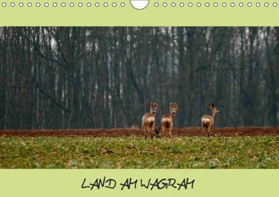 LAND AM WAGRAMAT-Version (Wandkalender 2018 DIN A4 quer), Bodinifoto