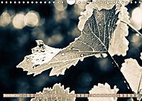 LAND AM WAGRAMAT-Version (Wandkalender 2018 DIN A4 quer) - Produktdetailbild 11