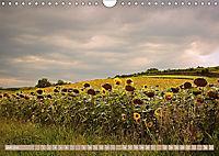 LAND AM WAGRAMAT-Version (Wandkalender 2018 DIN A4 quer) - Produktdetailbild 7