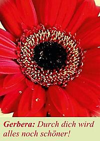 Lasst Blumen sprechen! (Posterbuch DIN A4 hoch) - Produktdetailbild 3