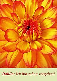 Lasst Blumen sprechen! (Posterbuch DIN A4 hoch) - Produktdetailbild 8