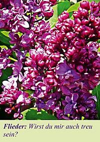Lasst Blumen sprechen! (Posterbuch DIN A4 hoch) - Produktdetailbild 5