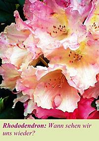 Lasst Blumen sprechen! (Posterbuch DIN A4 hoch) - Produktdetailbild 9