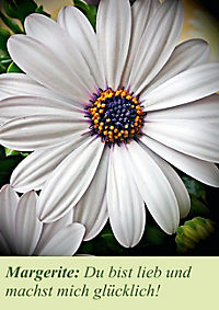 Lasst Blumen sprechen! (Posterbuch DIN A4 hoch) - Produktdetailbild 10