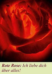 Lasst Blumen sprechen! (Posterbuch DIN A4 hoch) - Produktdetailbild 12