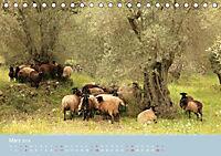 Lesbos - Inselimpressionen (Tischkalender 2018 DIN A5 quer) - Produktdetailbild 3