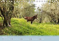 Lesbos - Inselimpressionen (Tischkalender 2018 DIN A5 quer) - Produktdetailbild 7
