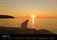 Lichter der Natur (Tischkalender 2018 DIN A5 quer) - Produktdetailbild 10