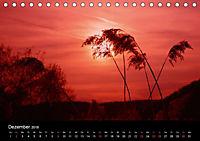 Lichter der Natur (Tischkalender 2018 DIN A5 quer) - Produktdetailbild 12