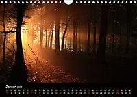 Lichter im Wald (Wandkalender 2018 DIN A4 quer) - Produktdetailbild 1