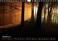 Lichter im Wald (Wandkalender 2018 DIN A4 quer) - Produktdetailbild 10