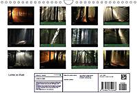 Lichter im Wald (Wandkalender 2018 DIN A4 quer) - Produktdetailbild 13