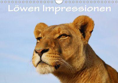 Löwen Impressionen (Wandkalender 2018 DIN A4 quer), Anke van Wyk