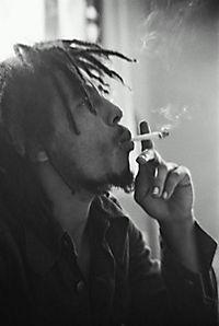 Marley, DVD - Produktdetailbild 2
