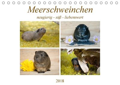 MEERSCHWEINCHEN neugierig - süß - liebenswert (Tischkalender 2018 DIN A5 quer), Petra Fischer
