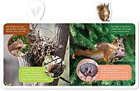 Mein kleines Tier-Lexikon - Das Eichhörnchen - Produktdetailbild 1