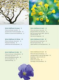 Mit Ursel Bühring durchs Heilpflanzenjahr - Produktdetailbild 3