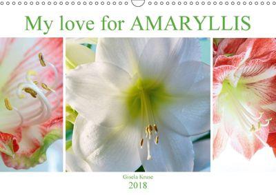 My love for AMARYLLIS (Wall Calendar 2018 DIN A3 Landscape), Gisela Kruse