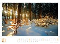 Mythos Wald 2019 - Produktdetailbild 1