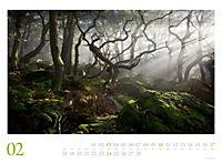 Mythos Wald 2019 - Produktdetailbild 2