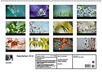 Naturfarben 2018 (Wandkalender 2018 DIN A2 quer) - Produktdetailbild 13