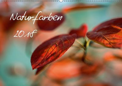 Naturfarben 2018 (Wandkalender 2018 DIN A2 quer), Nailia Schwarz
