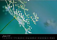 Naturfarben 2018 (Wandkalender 2018 DIN A2 quer) - Produktdetailbild 1