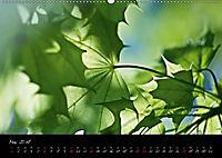 Naturfarben 2018 (Wandkalender 2018 DIN A2 quer) - Produktdetailbild 5