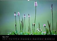 Naturfarben 2018 (Wandkalender 2018 DIN A2 quer) - Produktdetailbild 3