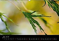Naturfarben 2018 (Wandkalender 2018 DIN A2 quer) - Produktdetailbild 7