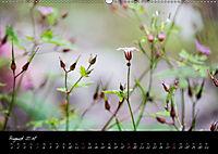 Naturfarben 2018 (Wandkalender 2018 DIN A2 quer) - Produktdetailbild 8