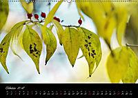 Naturfarben 2018 (Wandkalender 2018 DIN A2 quer) - Produktdetailbild 10