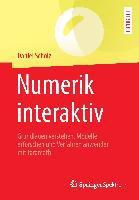 Numerik interaktiv, Daniel Scholz